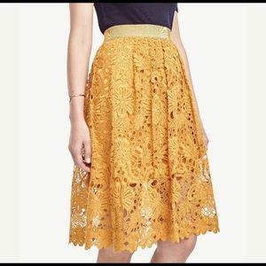 ANN TAYLOR | mustard lace full skirt 6